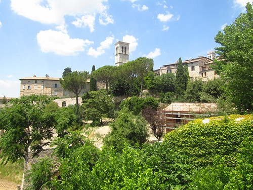 AssisiView