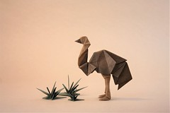 Emu - Gen Hagiwara (pierreyvesgallard) Tags: origami emu gen hagiwara bird australia outback grass saku papercraft paper wildlife