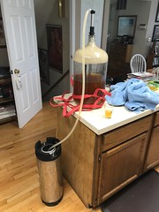 2019 229/365 8/17/2019 SATURDAY - Kegging the Saison (_BuBBy_) Tags: kegging saison style ale beer keg rack racking home brew homebrewing brewing 2019 229365 8172019 saturday 8 17 august 365 days 365days project project365 sat sa 229 17th seventeen seventeenth make making zymurgy