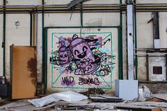 WILD STYLE (eleuro_eleuro) Tags: graffiti streetart urban urbanism urbanfotography art street muralism