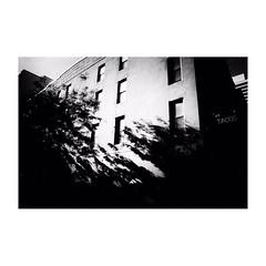 new york (s_inagaki) Tags: street blackandwhite bw monochrome tokyo snap 東京 散歩 bnw モノクロ 白黒 スナップ slowphoto スローフォト