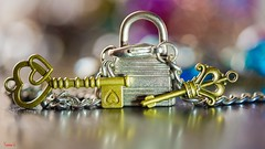 #Closed - 7262 (✵ΨᗩSᗰIᘉᗴ HᗴᘉS✵70 000 000 THXS) Tags: closed close macro sony sonyilce7 sonyilce7m3 macromondays bokeh color cadenas hensyasmine