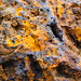 color and texture - close-up rock
