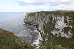 Bempton Cliffs looking south towards Flamborough Head (kitmasterbloke) Tags: bemptoncliffs rspb yorkshire nature reserve wildlife birds sea cliff coast uk outdoor flight spectacular colony breeding gannet kittiwake fulmar jackdaw psaintedlady shag