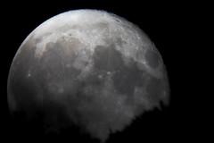 Rising Moon (Andrea Lugli) Tags: moon luna rising sorgere meade lx200 canon eos 60d night