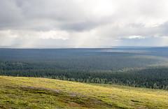 Kiilopää - Finland (Sami Niemeläinen (instagram: santtujns)) Tags: kiilopää suomi finland kekkosen kansallispuisto national park hiking trekking retki retkeily patikka patikointi outdoors ulkoilu luonto nature lappi lapland north pohjoinen tunturi mountain urho clouds pilvet