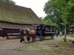 Paardenkoets in museumdorp Orvelte 18-08-2019 (marcelwijers) Tags: paardenkoets museumdorp orvelte 18082019