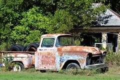 caddo oklahoma truck (reluctant_paladin) Tags: rusty old feral decay antique oklahoma mustang pickup truck