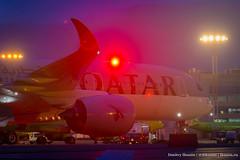 IKD_9090 (ikunin) Tags: 2019 a350 a350900 airbus domodedovo moscowregion qatar qatarairways aircraft airline airplane aviation spotting домодедово катар московскаяобласть подмосковье авиакомпания авиация международныйаэропорт самолёт споттинг