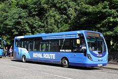 FIRST MIDLAND BLUEBIRD 63270 SN65OJV (bobbyblack51) Tags: first midland bluebird 63270 sn65ojv wright streetlite df wrightbus route branded royalroute edinburgh 2016