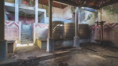 Liquid Therapy... (nickw_photography) Tags: urban exploring urbex abandoned art empty decay lost old portugal