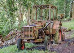 Tractor, Pant-du woodland, N/Wales, UK, 2019. (Phlips photos) Tags: woodland wales pantdu fujixt2 fuji1855mm 2019 northwales woods tractor rusty