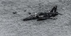 27319747501_5e95274574_o (Mal.Edward Photography) Tags: machloop f16 belgianairforce royalairforce hawks a400m c130hecules mig t35 c17