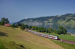 🇨🇭 S3 21360 @ Arth (Wesley van Drongelen) Tags: sbb cff ffs schweizerische bundesbahnen chemins de fer fédéraux suisses ferrovie federali svizzere svizzera sbahn luzern s3 npz ntn domino rbde 560 arth goldau zugersee train trein zug