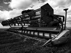 Project Sunday Week 33 Shoot a Powerful Image (Carol Dunham) Tags: projectsunday week33 powerful combineharvester blackandwhite