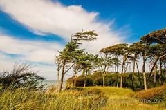 Weststrand - western beach (eyecatcherfotos) Tags: prerow beach baltic sea ostsee strand himmel weite freiheit wasser blue sky ruhe calm focus fokus mv mecklenburg weststrand darss landschaft meer