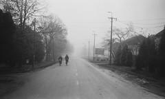 Early Winter Blues - Battonya 2018 (Attila Pasek (Albums!)) Tags: hp4 analogue bicycle expired road battonya street ilford rangefinder bw blackandwhite camera 35mm film argusc3