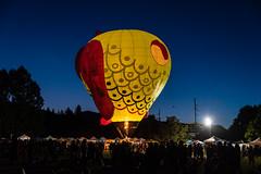 EdenBalloonLighting-3391 (af_caver) Tags: balloons eden utah lighting nikon nikond750 tamron2470g1 tamron70200g2 tamronusa night