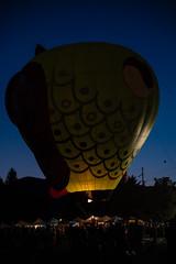 EdenBalloonLighting-3334 (af_caver) Tags: balloons eden utah lighting nikon nikond750 tamron2470g1 tamron70200g2 tamronusa night
