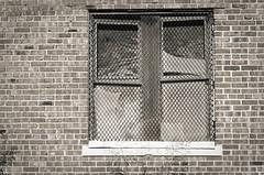 rust diamonds (fallsroad) Tags: tulsaoklahoma city urban abandoned building industrial blackandwhite bw monochrome sepia brick window broken decay glass rust screen metal nikonsigma