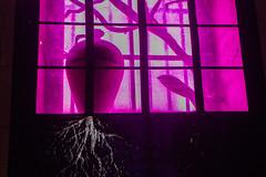 006_08182019_Gonzalo Borondo_Temple des Chartrons_Bx (bertrand.meallet) Tags: 2019 artsplastiques bordeaux gonzaloborondo templedeschartrons