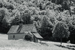 Kapelle --- Chapel (der Sekretär) Tags: baum bern berne burgdorf bäume christian gotteshaus grass kantonbern kapelle kirche schweiz switzerland wald wiese cantondeberne chapel christlich church forest gras lasuisse meadow tree trees wood