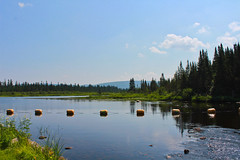 River Flow (TMM_Photography) Tags: river nature trees sunny blue skies green calm zen relax silence