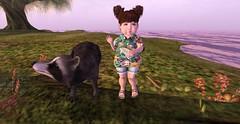 Camp Outfit_001 (Kaysha Yootz (Kid Blogger)) Tags: bebebug bebe bebebody blogger blog blogging secondlife secondlifekid camp child