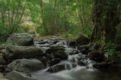 Montseny (DAVID MARCHENA) Tags: leaf leaves longexposure canon calm calma landscape dramaticlandscape scene green trees tra forest rock rocas waterfall water panoramic spain montseny