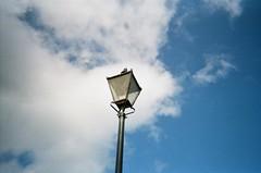 Devorgilla Bridge lamp (bigalid) Tags: film 35mm yashica mf1 kodak 400uc ultramax 400iso dumfries august 2019 c41 devorgilla bridge nith river lamp