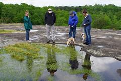 39 the girls investigate the tadpoles (anne.kane) Tags: 40acrerock southcarolina wildflowers waterfalls naatureconservancy
