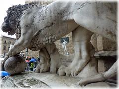 Wo ist David ? / Where's David ? (ursula.valtiner) Tags: kunst art figur figure skulptur sculpture löwe lion david michelangelo palazzovecchio florenz firenze florence toskana toscana tuscany italien italy