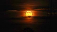 Full Sturgeon Moon (blazer8696) Tags: 2019 brookfield brookfieldcenter ct connecticut ecw hdr happy happylandings img366456balanced landings moon sturgeon t2019 usa unitedstates farm full meadow open protected rise space