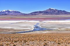 Salar de Tara (RobertLx) Tags: salardetara saltflat colourful landscape arid nature chile theandes altiplano losflamencos atacama