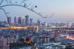 琶洲CBD (kevinho86) Tags: blue guangzhou city sunset sky urban colour art skyline architecture skyscraper canon landscape twilight scenery downtown cloudy citylife cityscapes citylights scape 城市 lightshadow 空 建築 canton 天空 highview ontheroof eos450d 天際線 都會 内透 ef1635f4lusm 35mm