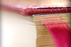 A Closed Book (flowrwolf) Tags: macromondays closed aclosedbook book bookmark bookcover pages red white gold corner bookcorner naturallight creativetabletopphotography dreamscancometrue canon760d closeup macro makro macrophotography macrophotograph macrolens primelens indoor inside flowrwolf