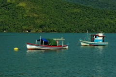 Bâteaux de pêche au mouillage - Saco do Mamanguà (Edgard.V) Tags: brésil brasil brasile brazil paraty mamangua boats barcos barche pesca pescador pescatore fishermen ocean océan oceano