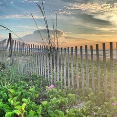 (skepvzrq47) Tags: ocean beach nature seaside southernliving saltlife aunt sunrise