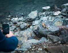 IMG_9448 (RegiShu) Tags: 2019 camping oregon summer us usa wallowalakestatepark joseph unitedstatesofamerica