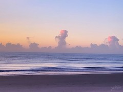 (skepvzrq47) Tags: nature southernliving saltlife sunrise seaside ocean beach