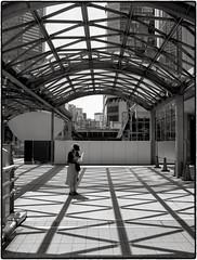 Super Ikonta 530 - Shibuya Tokyo (Peter Bellars) Tags: superikonta530 zeiss ikonta across 100iso df69 cinestill