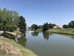 237/365/8 (f l a m i n g o) Tags: 2019 18th august sunday arvada water pond 365days project365