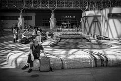 (Camera Freak) Tags: 190817kanazawam10kanazawaishikawaleicam1028mmelmaritjapan kanazawa ishikawa japan station people man human sitting bench light shadow bnw monochrome blackandwhite rucksack waiting elderly