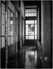 Super Ikonta 530 - Maeda House,Tokyo (Peter Bellars) Tags: superikonta530 zeiss ikonta across 100iso df69 cinestill
