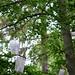 Underwear in the woods