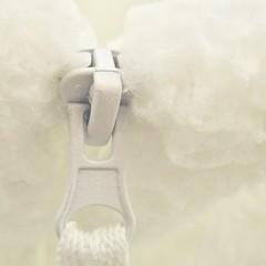 zipper pull, closed (muffett68 ☺ heidi ☺) Tags: macromondays closed zipper ethereal zipperpull allwhite white macro cmwdbw highkey ainly worked intended belated hmm cerati