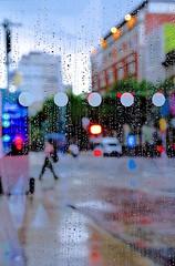 Thunderstorm (waiting in a bush shelter) (sjnnyny) Tags: tamron35150mmf2840divcosd stevenj sjnnyny nyc manhattan rain thunderstorm streetview streetphoto cityurban mnahattan defocus nylife