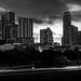 Downtown Austin Skyline Monochrome
