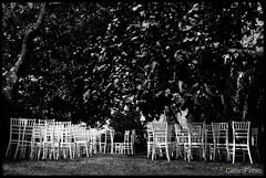 La Festa è Finita... (Gaiani Fabio) Tags: sedie bn albero