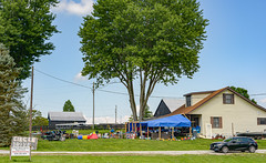Under a big tree yard sale (risingthermals) Tags: blue clear sky usa united states north america people americans trees rural outside tent goods for sale garage yard lawn grass front